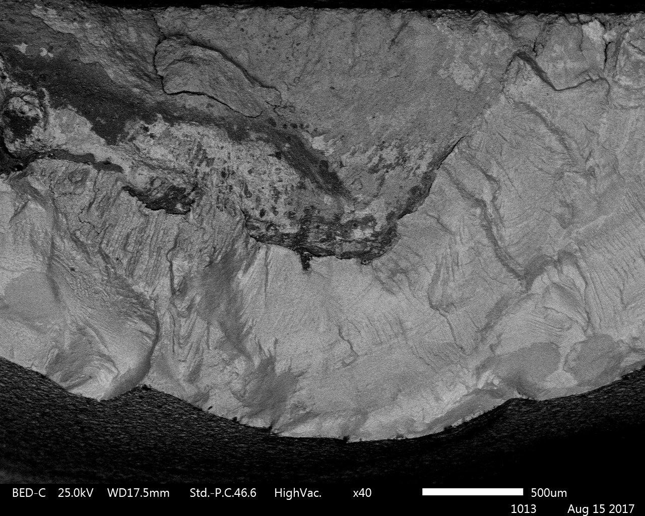 Backscatter image showing scale location on sample