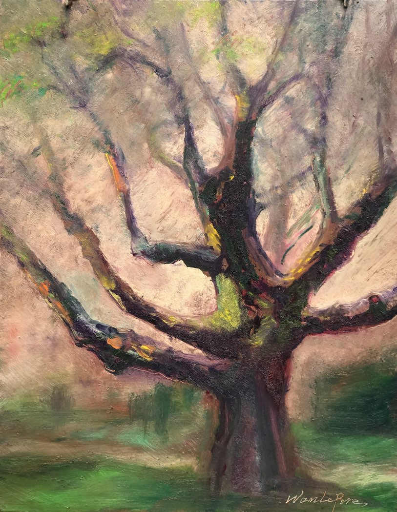 "Ken's Aged Tree 11"" x 14"" oil on museum board"
