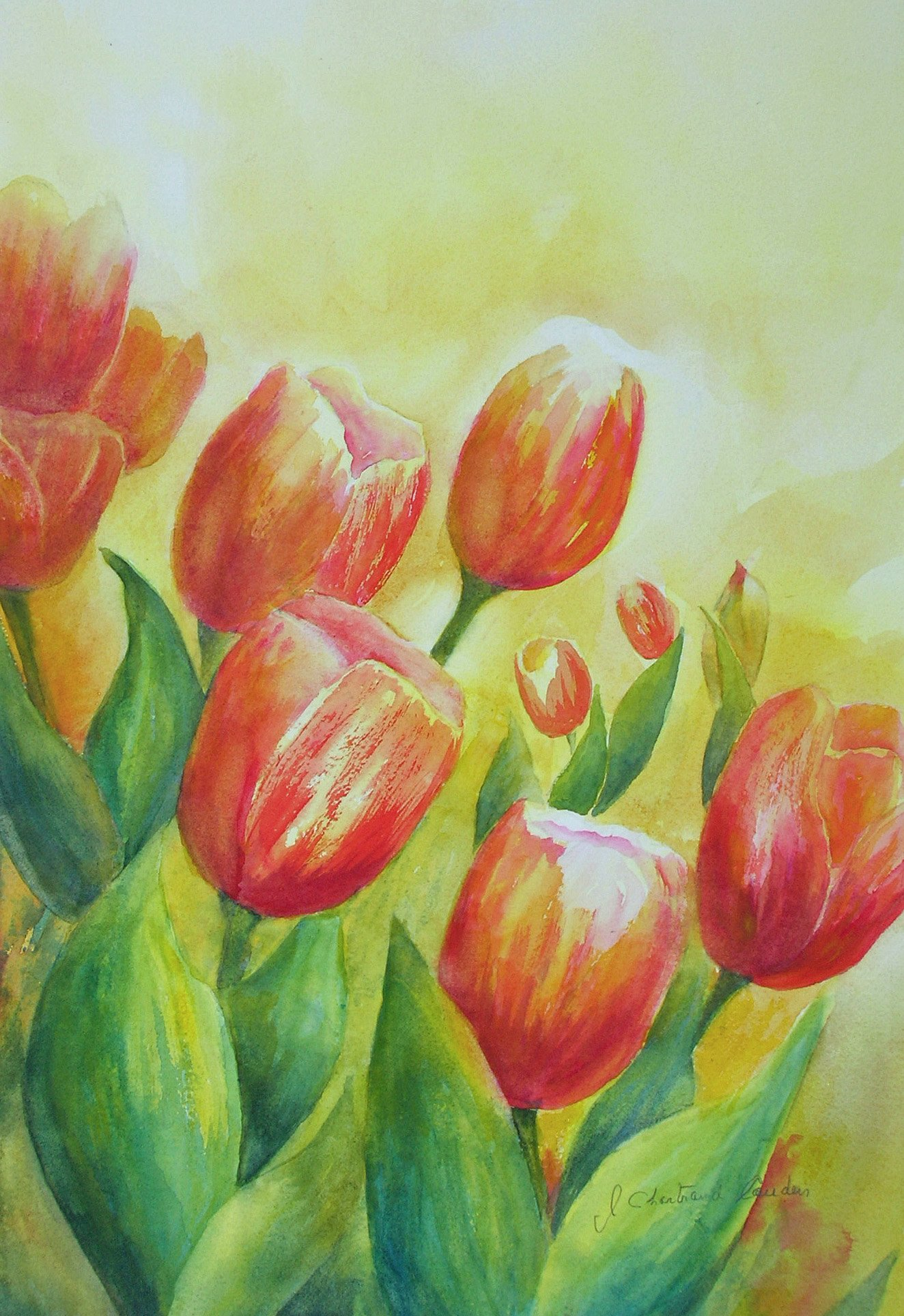 "Les tulipes aquarelle 18"" x 12"""
