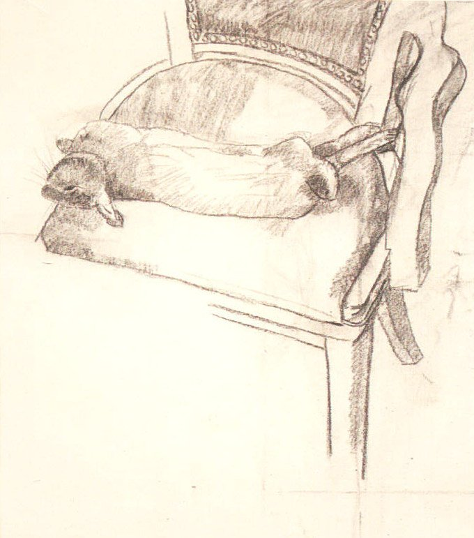 Cottontail Still life, 2001, charcoal on canvas