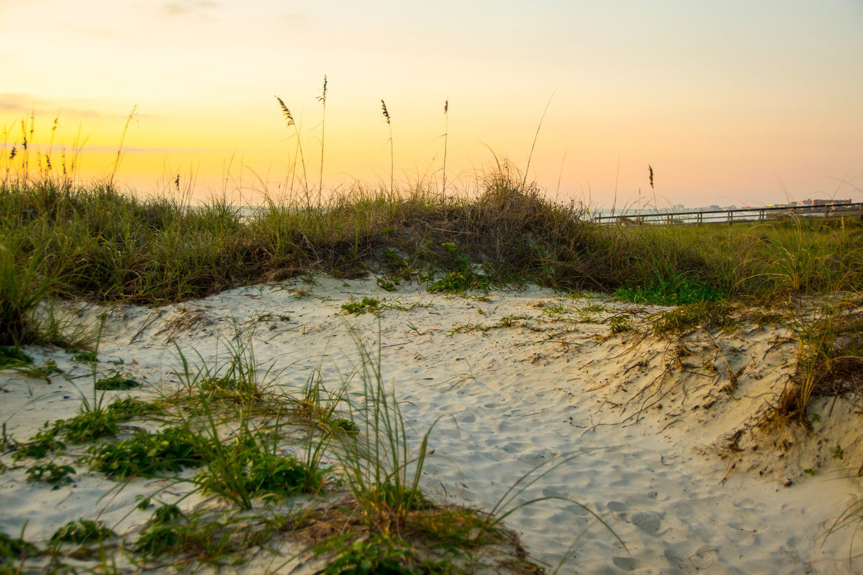 https://0901.nccdn.net/4_2/000/000/008/486/sand-dune-serenity.jpg
