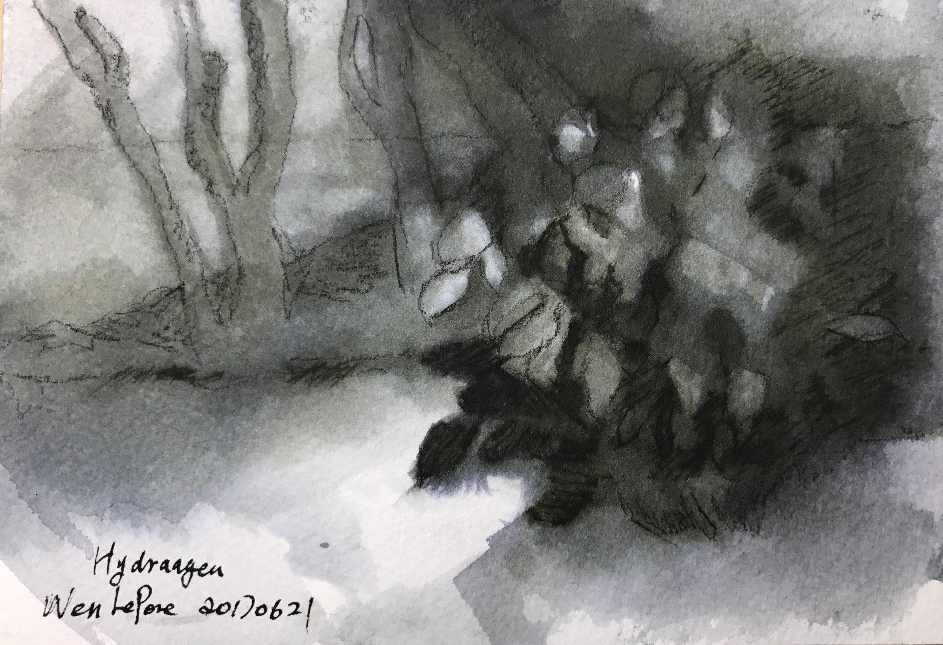 https://0901.nccdn.net/4_2/000/000/008/486/watercolor13.jpg