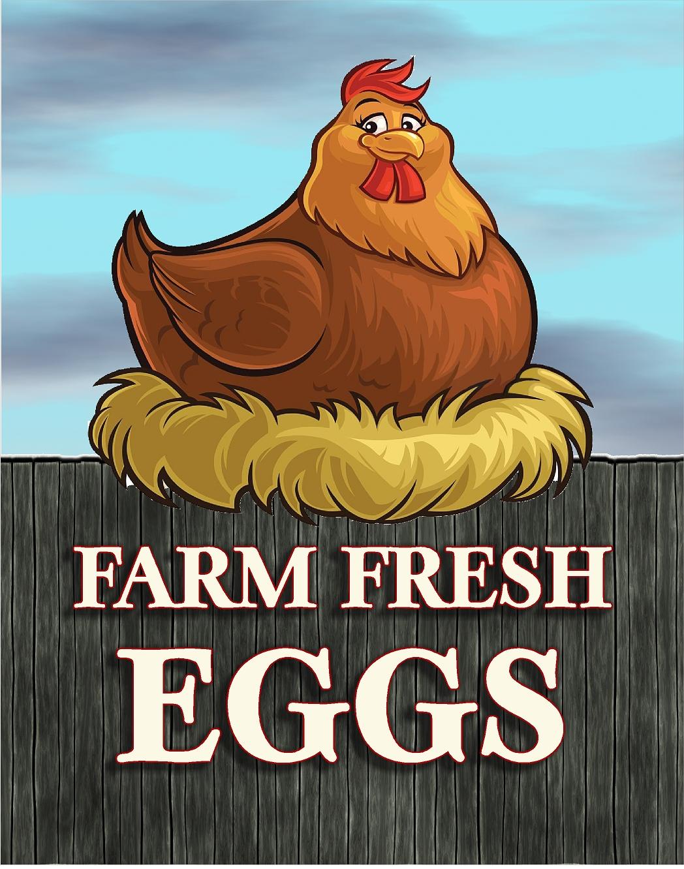https://0901.nccdn.net/4_2/000/000/009/390/farm-fresh-eggs.jpg