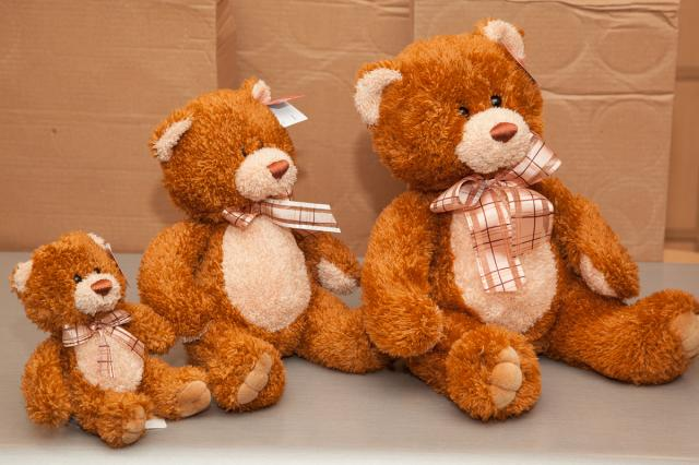 https://0901.nccdn.net/4_2/000/000/009/ac5/zb_port_alberni_stuffed_bears-4370.jpg