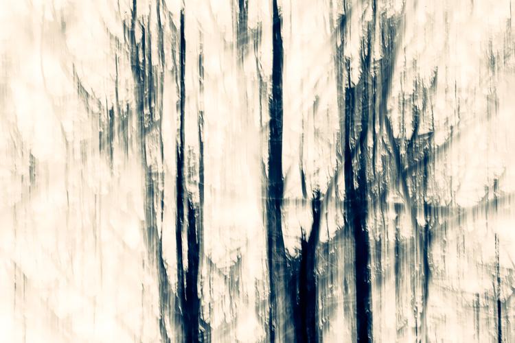 https://0901.nccdn.net/4_2/000/000/00d/f43/00025_13Q2092-blue_dawn.jpg
