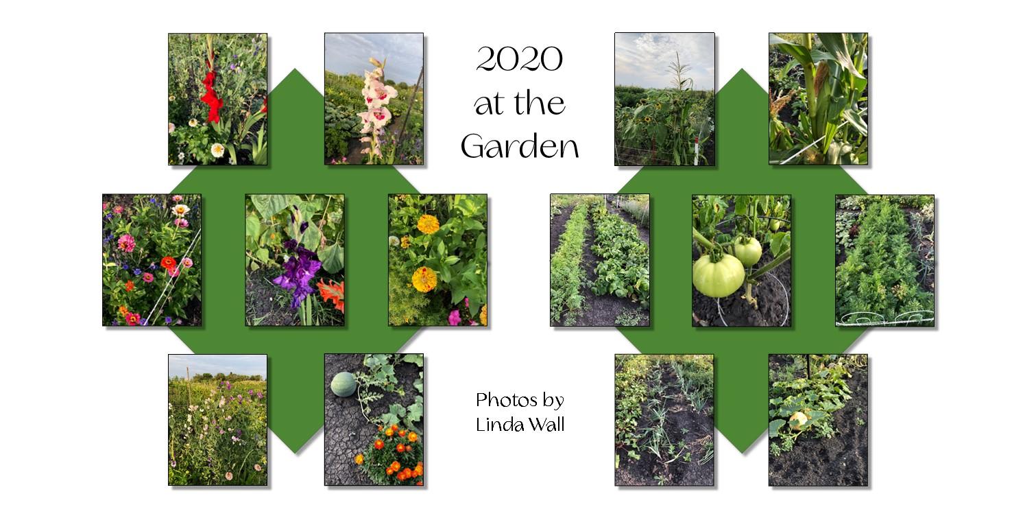 https://0901.nccdn.net/4_2/000/000/00d/f43/garden6.jpg