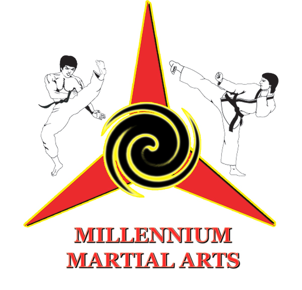 Millennium Of Martial Arts in Vaughan