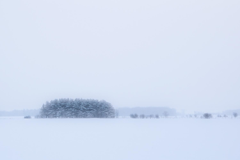 https://0901.nccdn.net/4_2/000/000/00d/f43/snowsquall.jpg