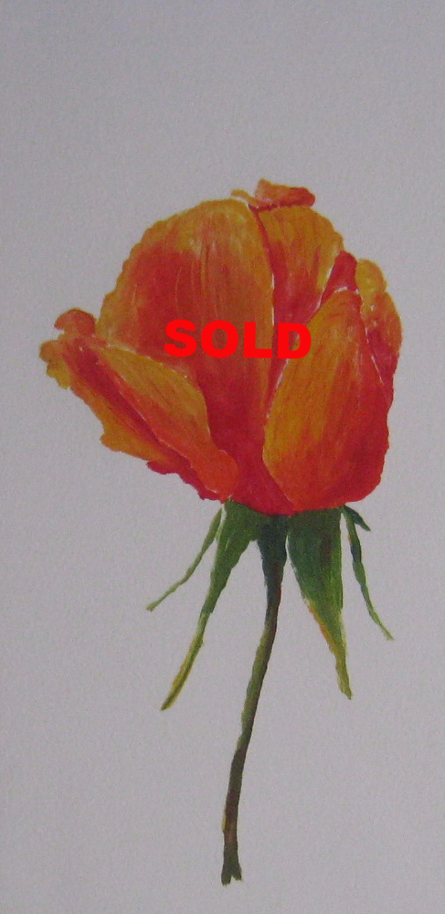 Rose Bud, monotype SOLD