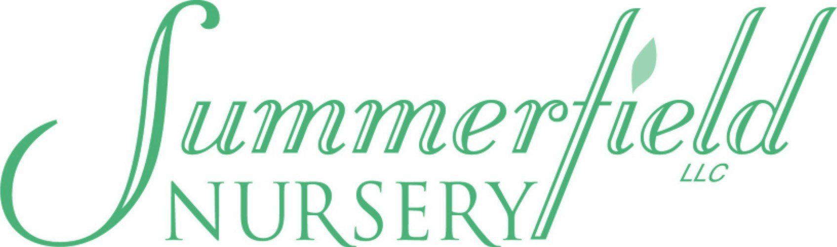Summerfield Nursery