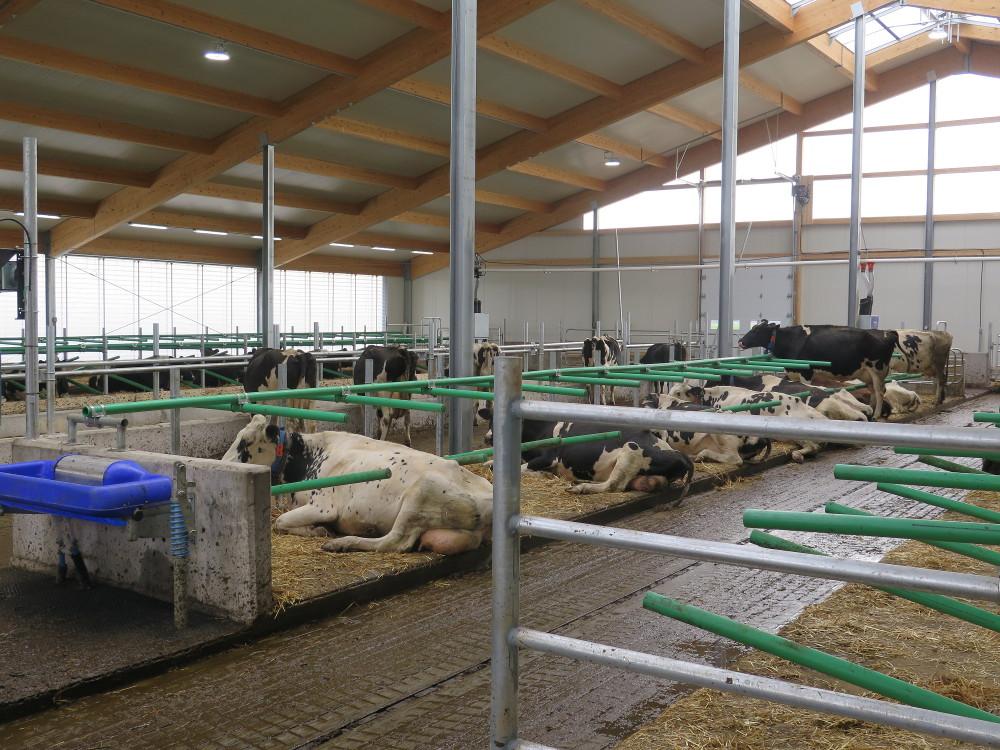 2017 Quebec - Dairy barn