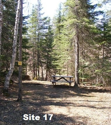 Site 17 - Tent Site - No Services