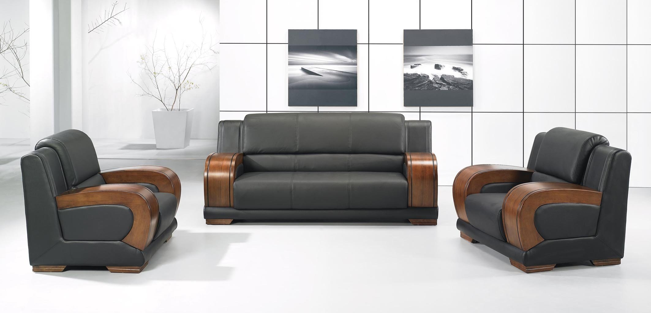 leather furniture cleaning photo