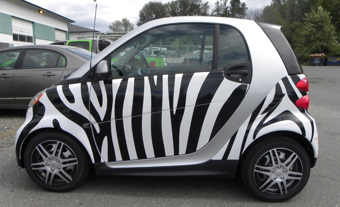 https://0901.nccdn.net/4_2/000/000/017/e75/zebra-smart-car-alt.jpg