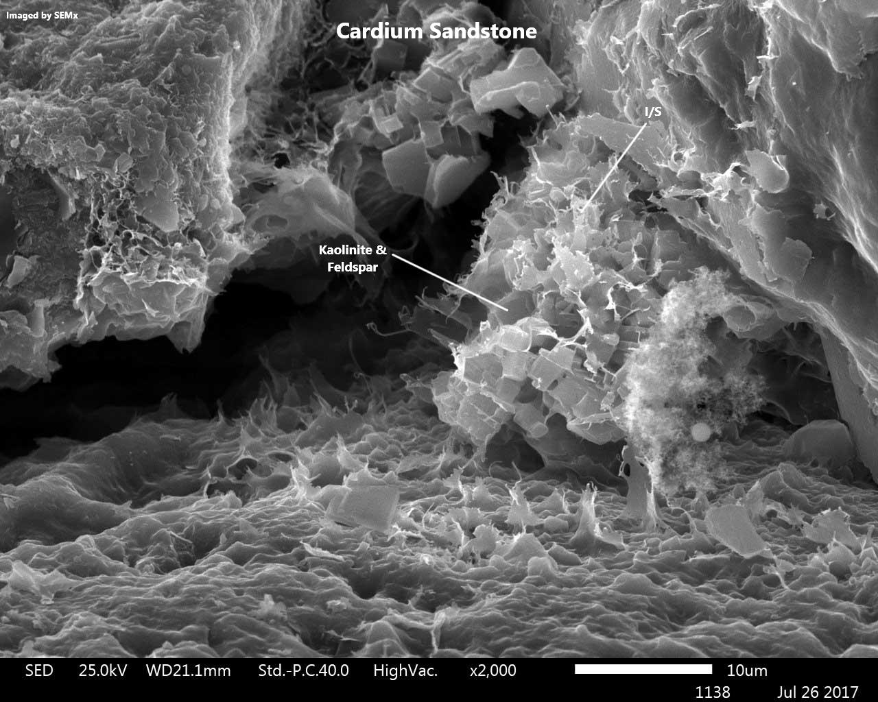 Cardium Sandstone