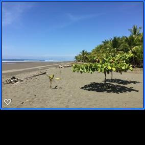 https://0901.nccdn.net/4_2/000/000/019/c2c/nice-beach-284x284.png
