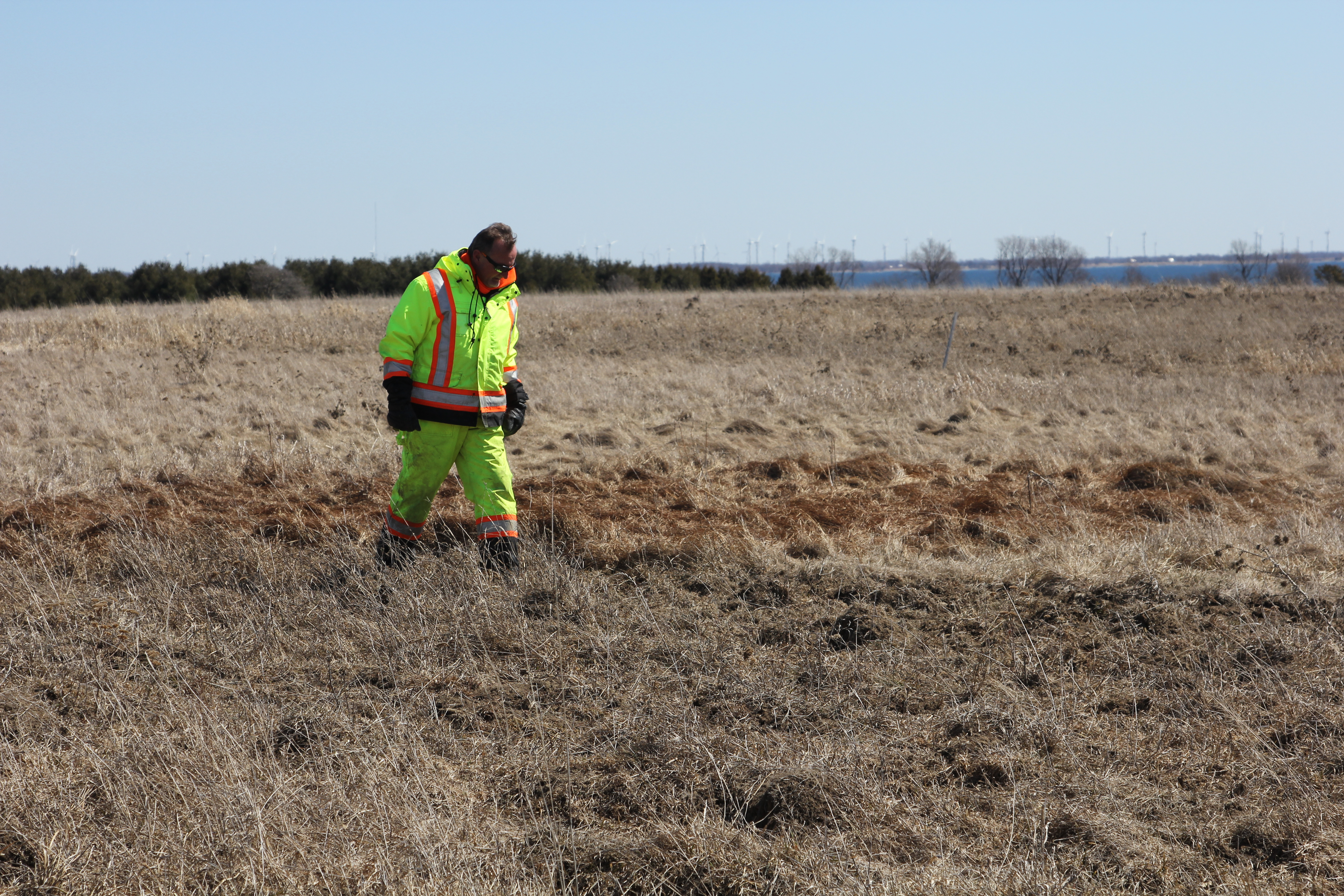 Agricultural field assessment.