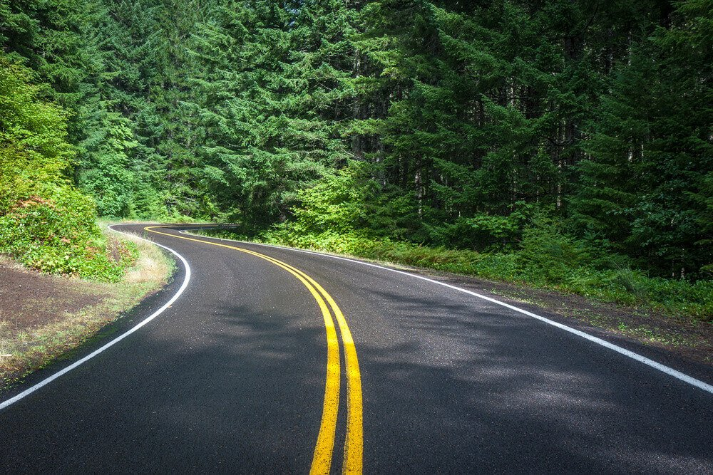 A newly paved road in a beautiful forest setting