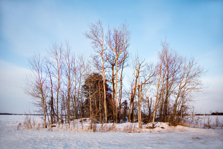https://0901.nccdn.net/4_2/000/000/020/0be/winter-oasis.jpg