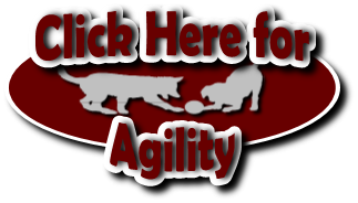Click to go to the Agility page