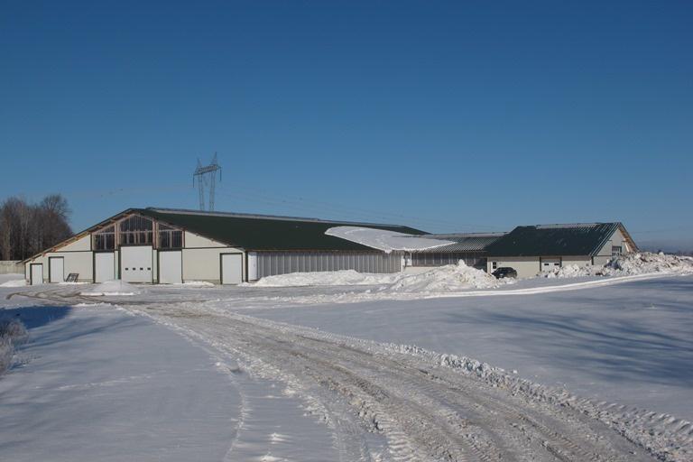 2014 Dundee - Dairy barn