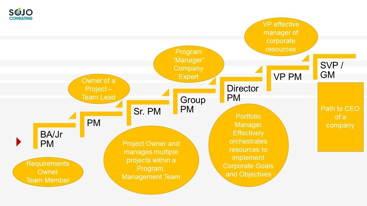 Why Project Management????