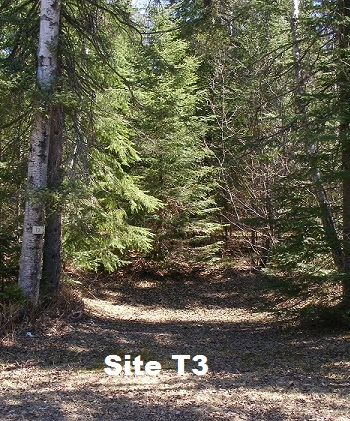 Site T3 - Tent Site - No Services