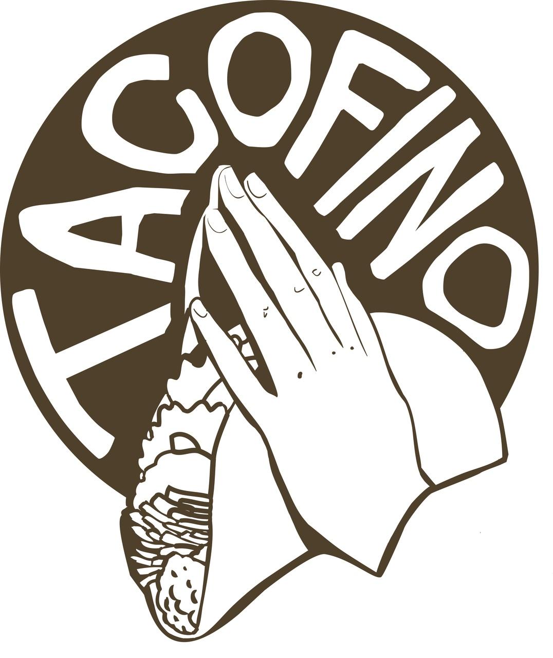 Image result for tacofino logo