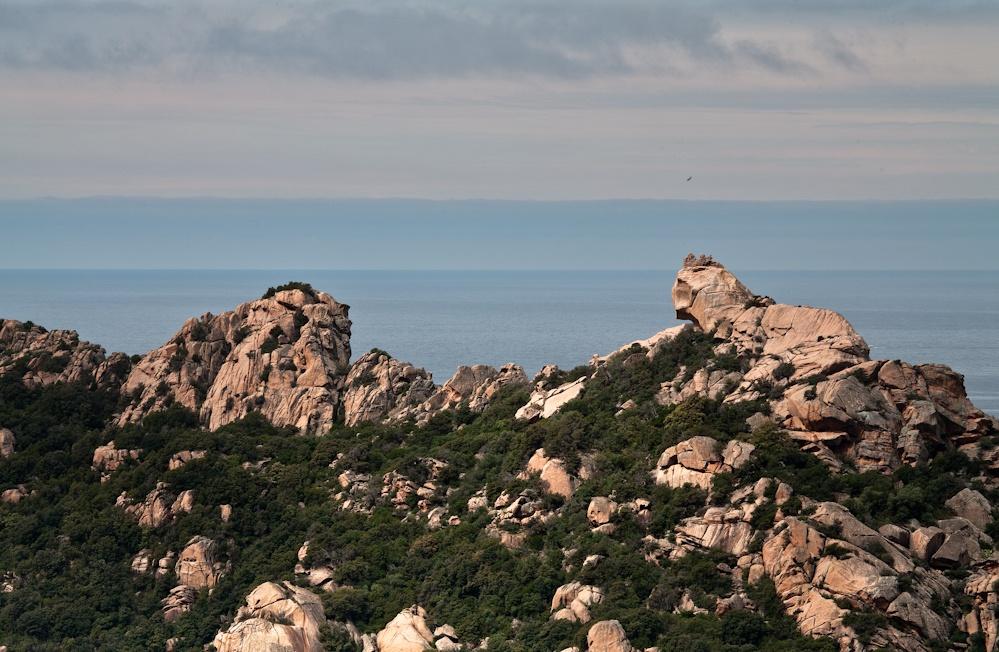 Le Lion de Roccapina  avec sa crinière  dentelée - Sud-ouest  de la Corse - Avr  2010