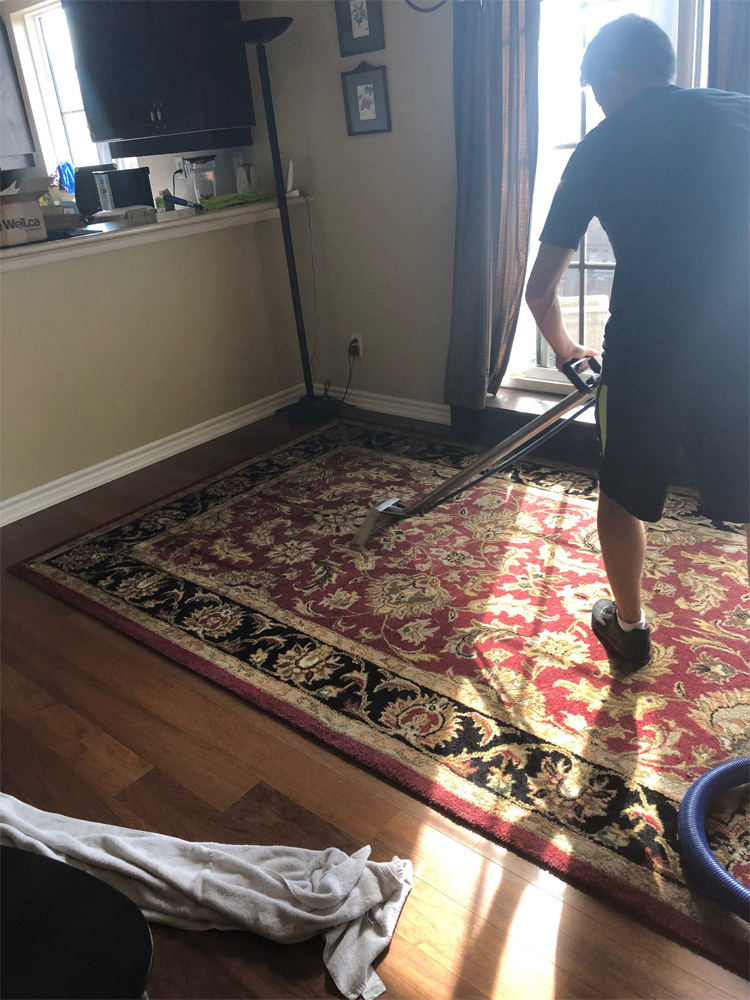 Cleaning without harming wooden floors