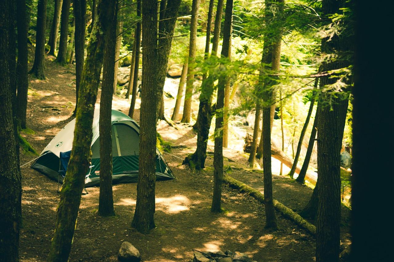 https://0901.nccdn.net/4_2/000/000/03f/ac7/CampingBC.jpg
