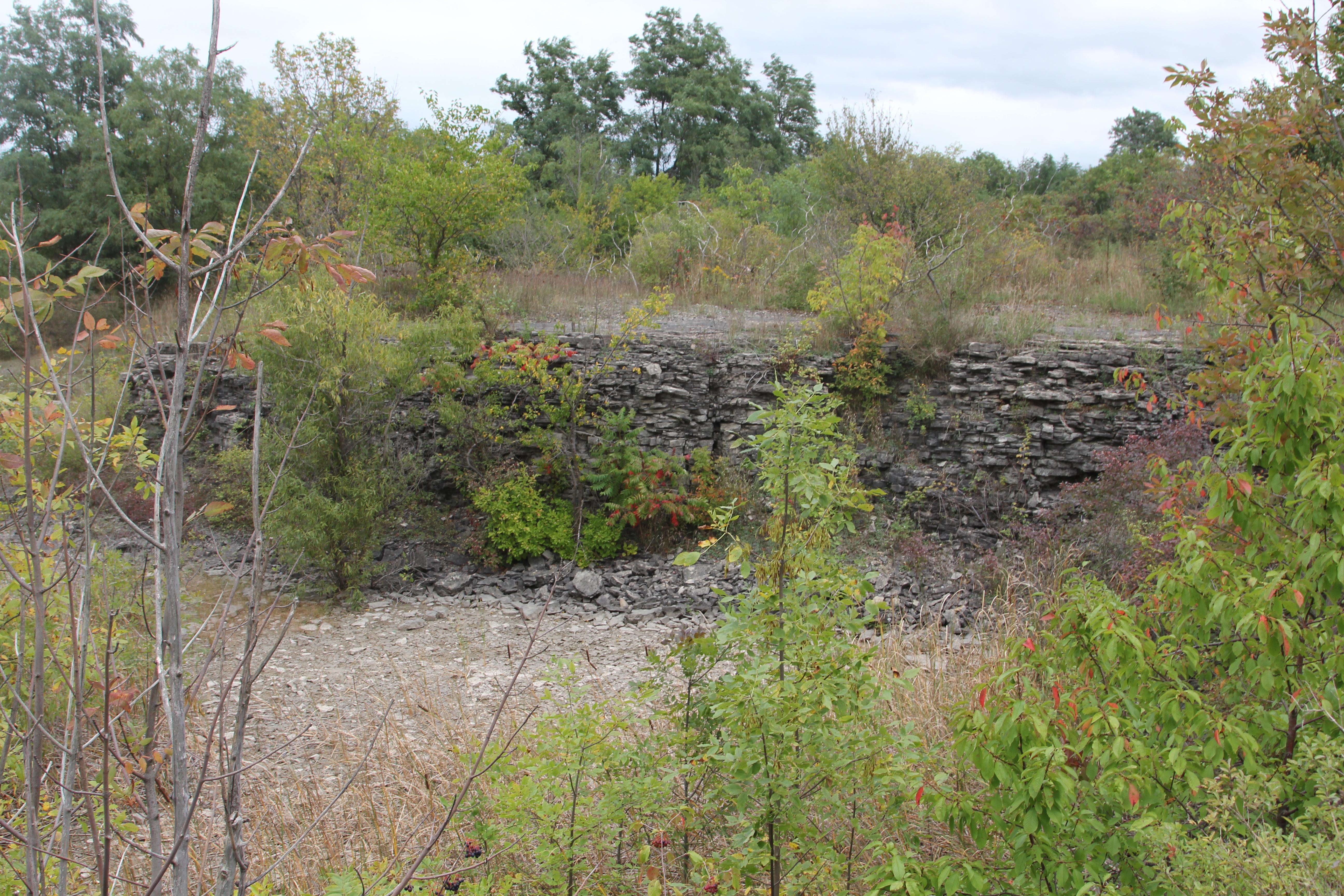 Abandoned quarry lands.