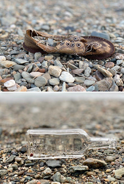 Walkabout:  Found on Stanley's Beach