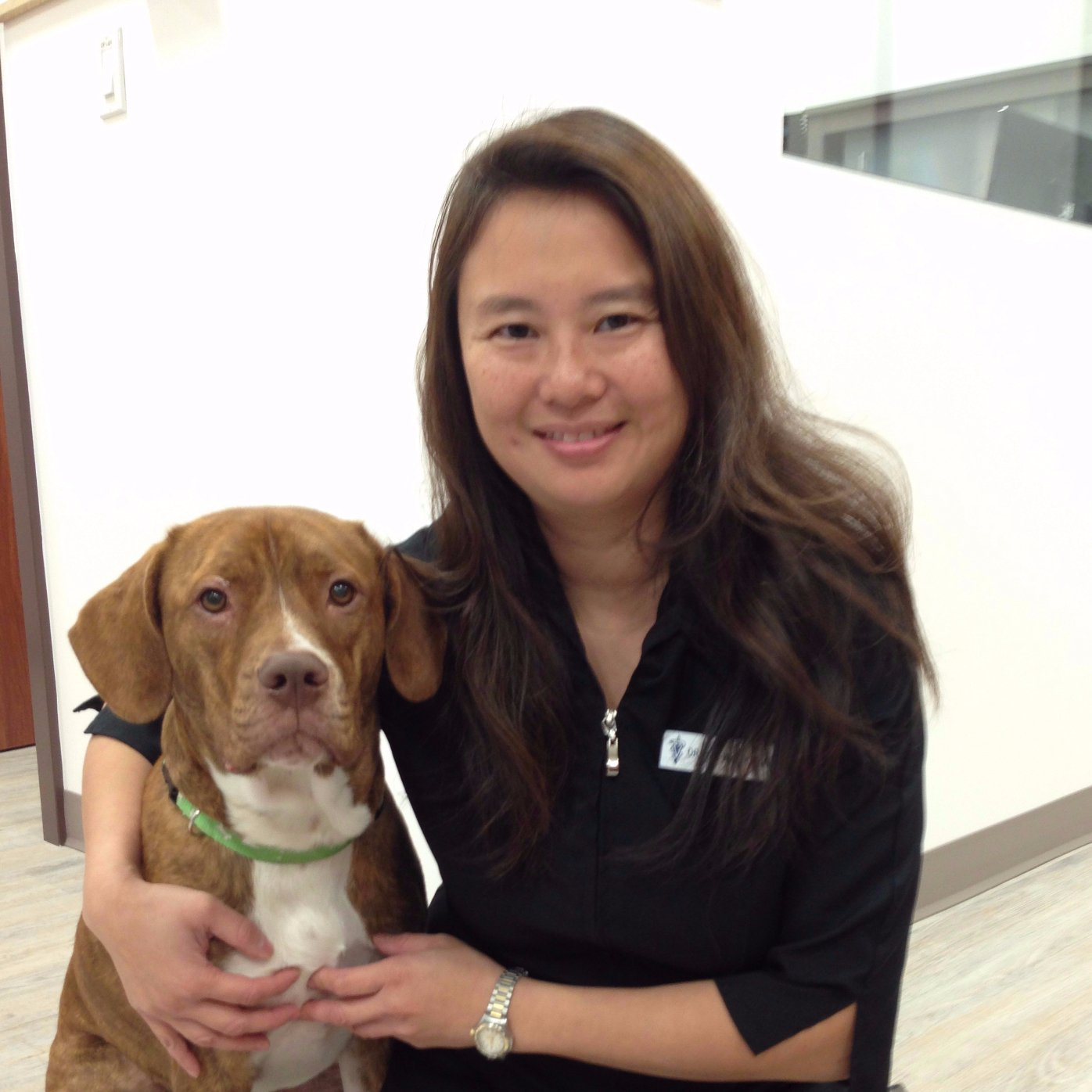 Helmcken Veterinary Clinic - Dr  Tin Wai Kwan - About Us