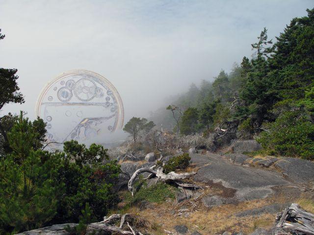 Fog Thyme