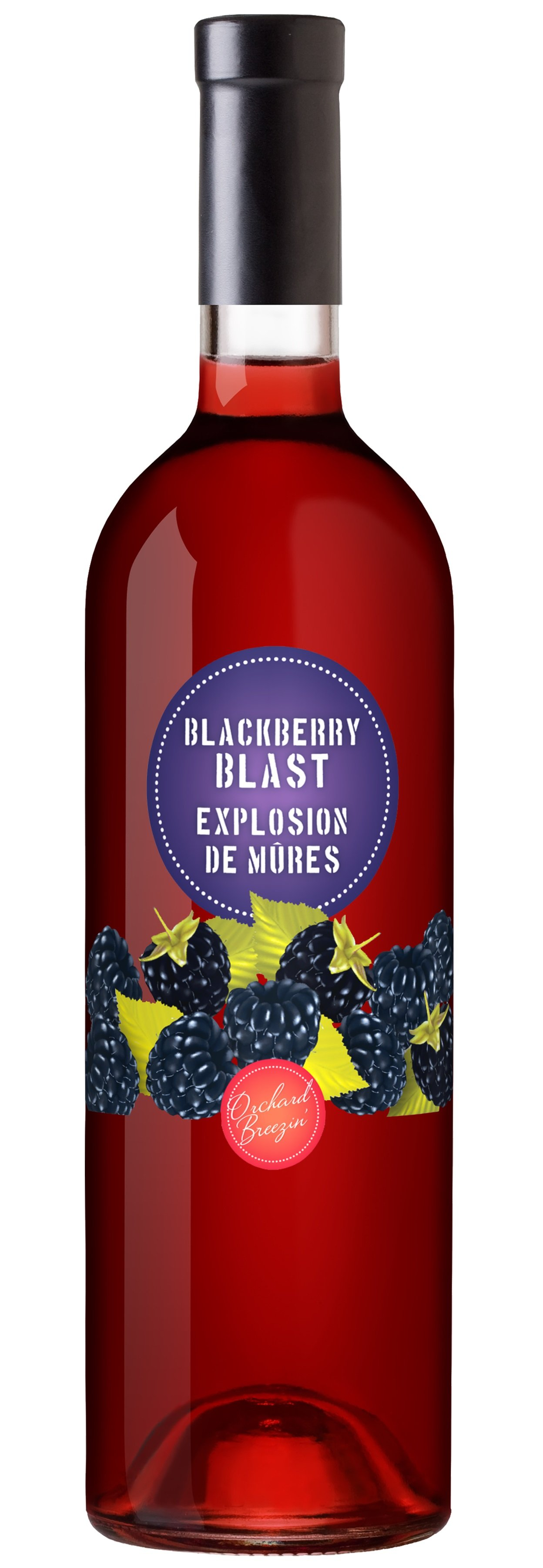 https://0901.nccdn.net/4_2/000/000/046/6ea/OB_Bottle_BlackberryBlast.jpg