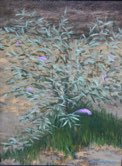 """Butterfly Bush"" 9"" x 12' Alkyd on hard board  $ 200"