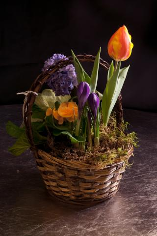 https://0901.nccdn.net/4_2/000/000/046/6ea/planter-baskets-port-alberni-6.jpg