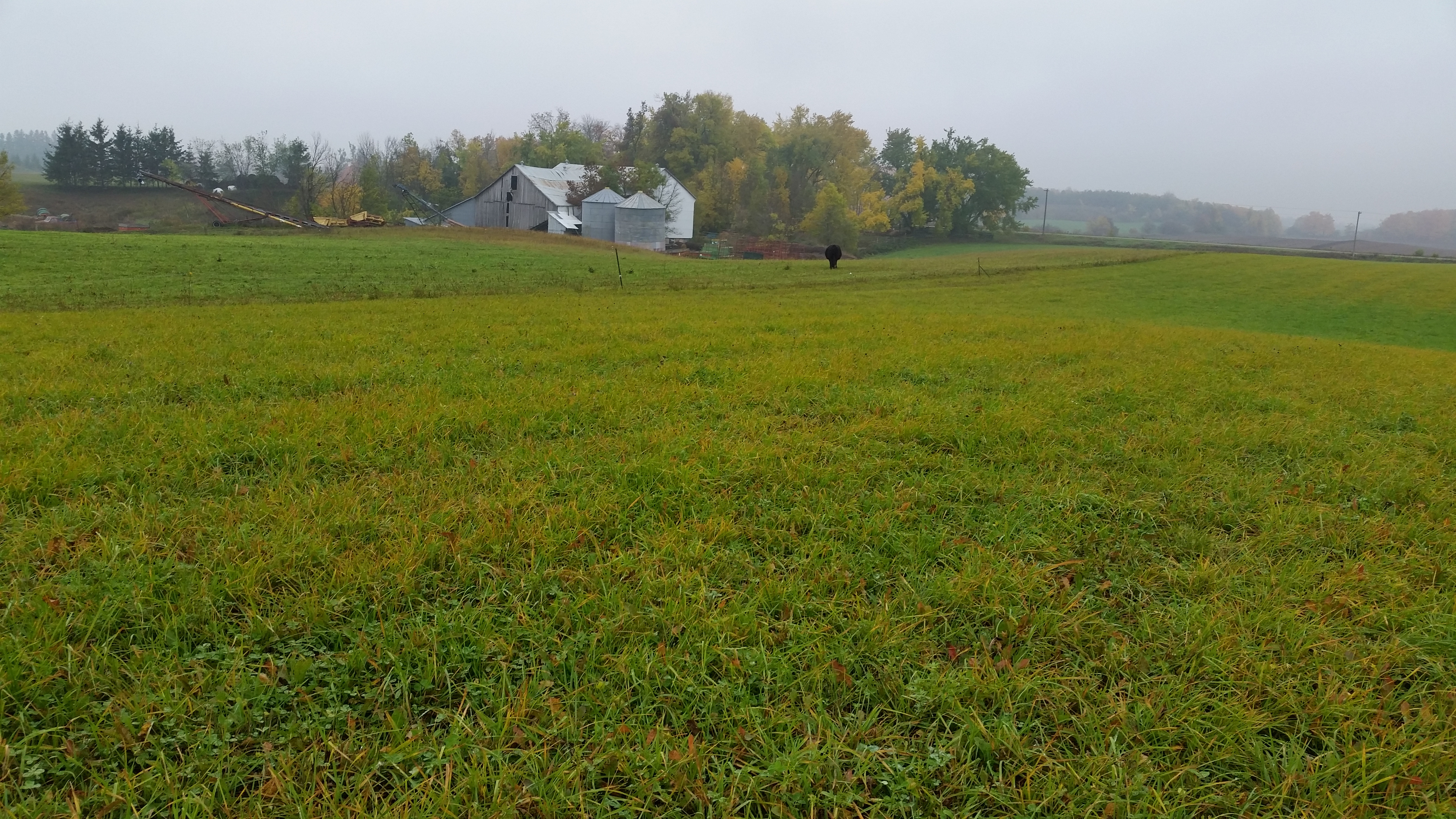 Agricultural facility and land assessment.