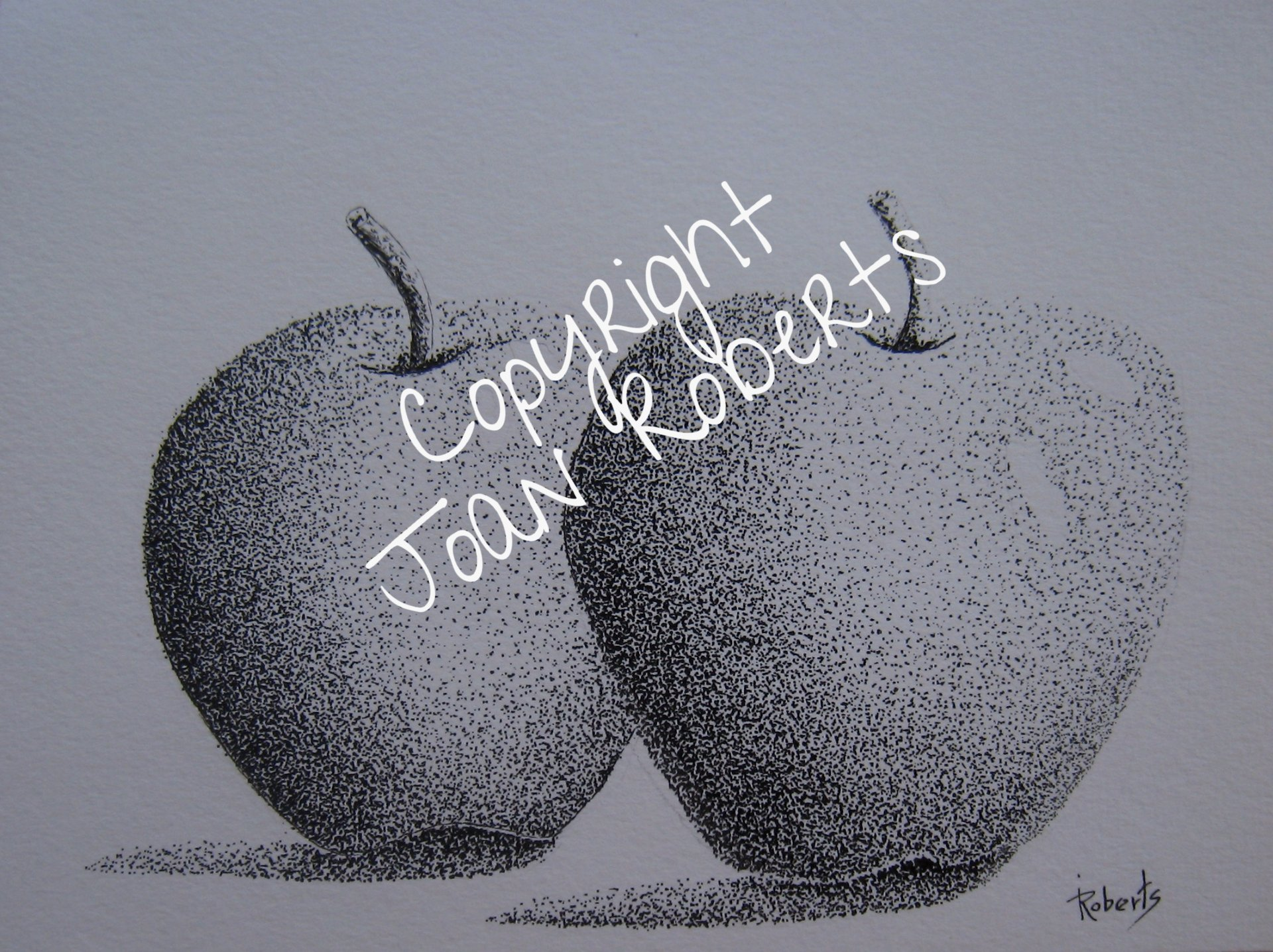 Two Apples 7.5 x 5.5 $120.00