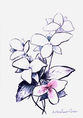 """Fleur printemps Encre 16"""" x 12"""""""