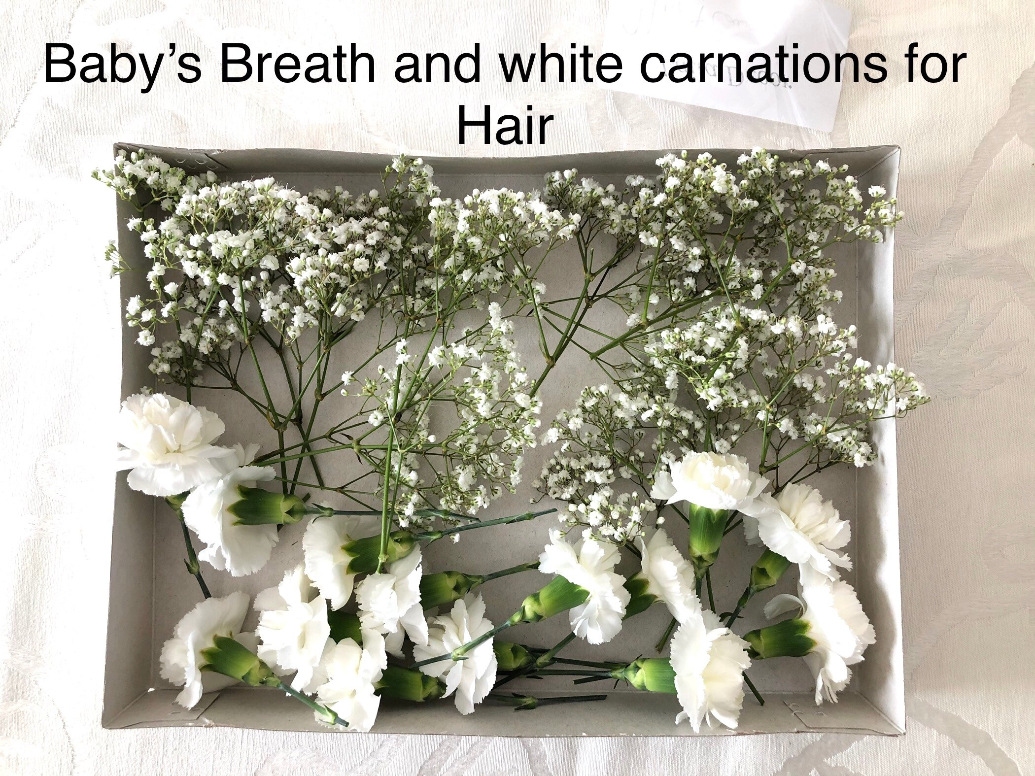 Babies breath and carnations for hair