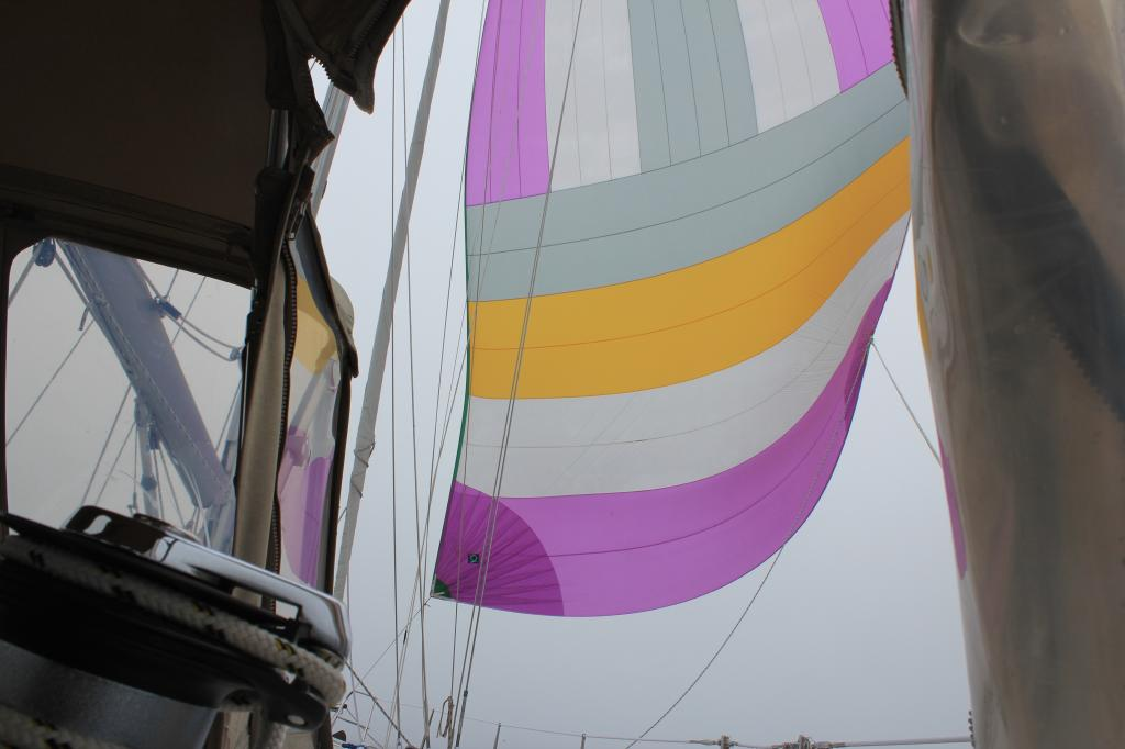 COMPASS ROSE X FLYING THE CRUISING SPINNAKER