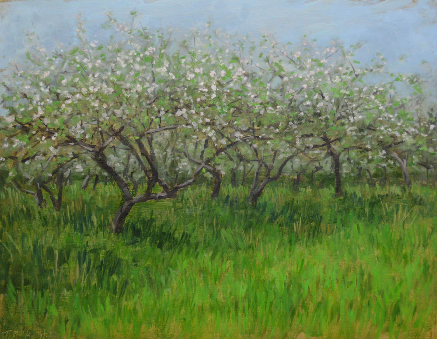 somers orchard