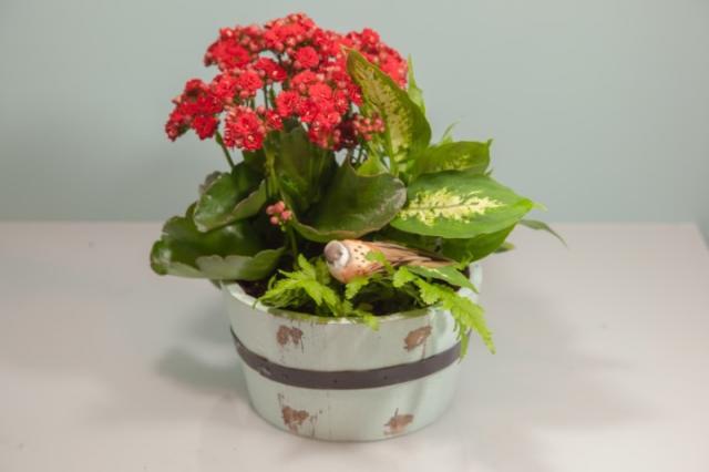 https://0901.nccdn.net/4_2/000/000/051/72c/lcp-planter-2.jpg