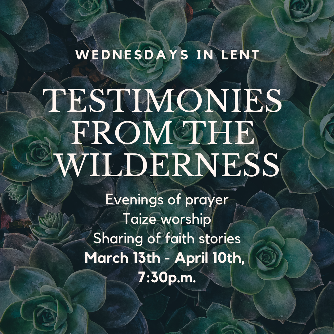 https://0901.nccdn.net/4_2/000/000/056/7dc/Testimonies-from-the-Wilderness---web-event-page.png