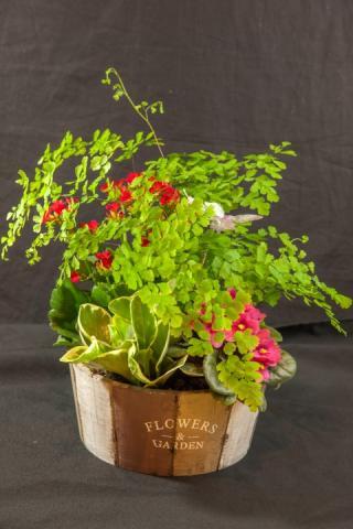 https://0901.nccdn.net/4_2/000/000/056/7dc/lcp-planter-basket-may12-2020-4742.jpg