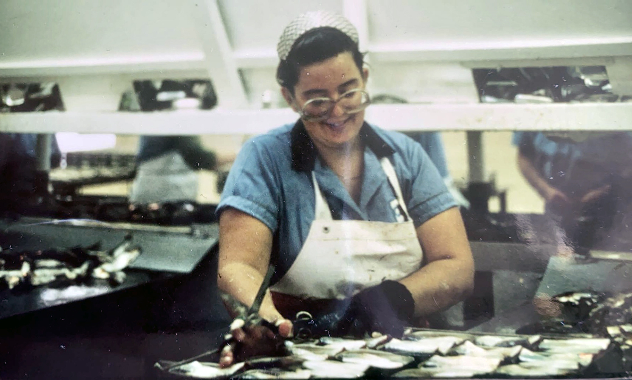 Teri Bainbridge working in the Connors Brothers Seal Cove Sardine Canning Factory, c. 1990.