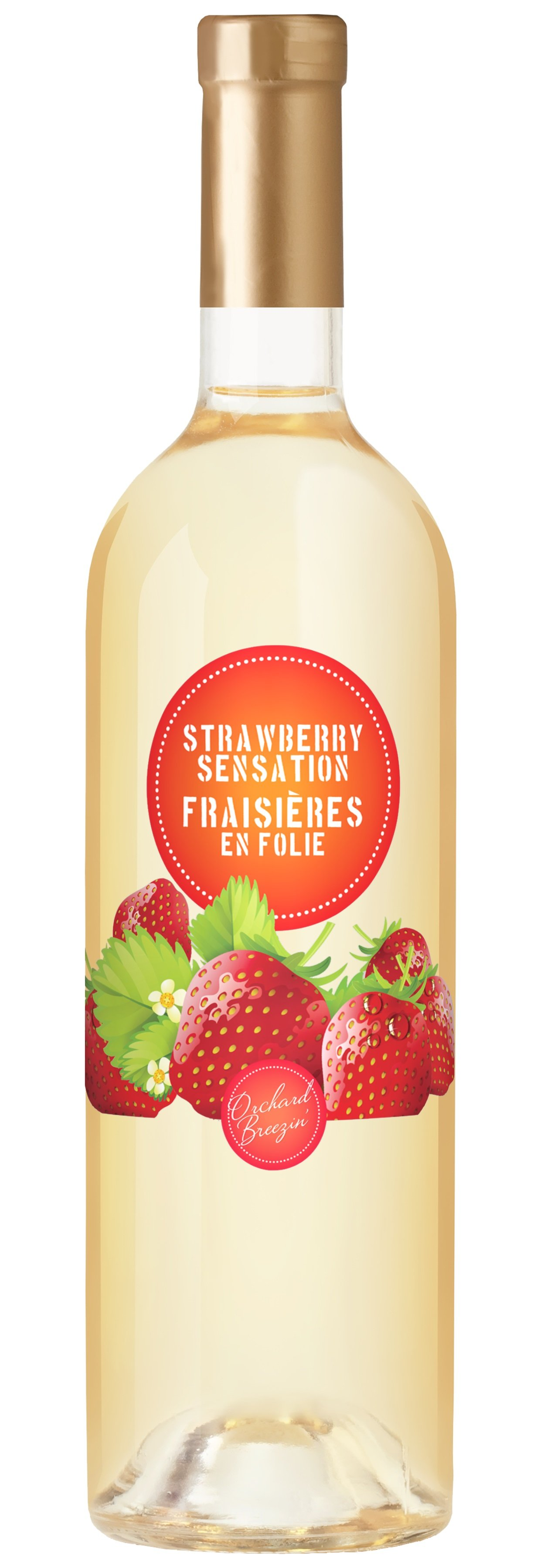 https://0901.nccdn.net/4_2/000/000/057/fca/OB_Bottle_StrawberrySensation.jpg