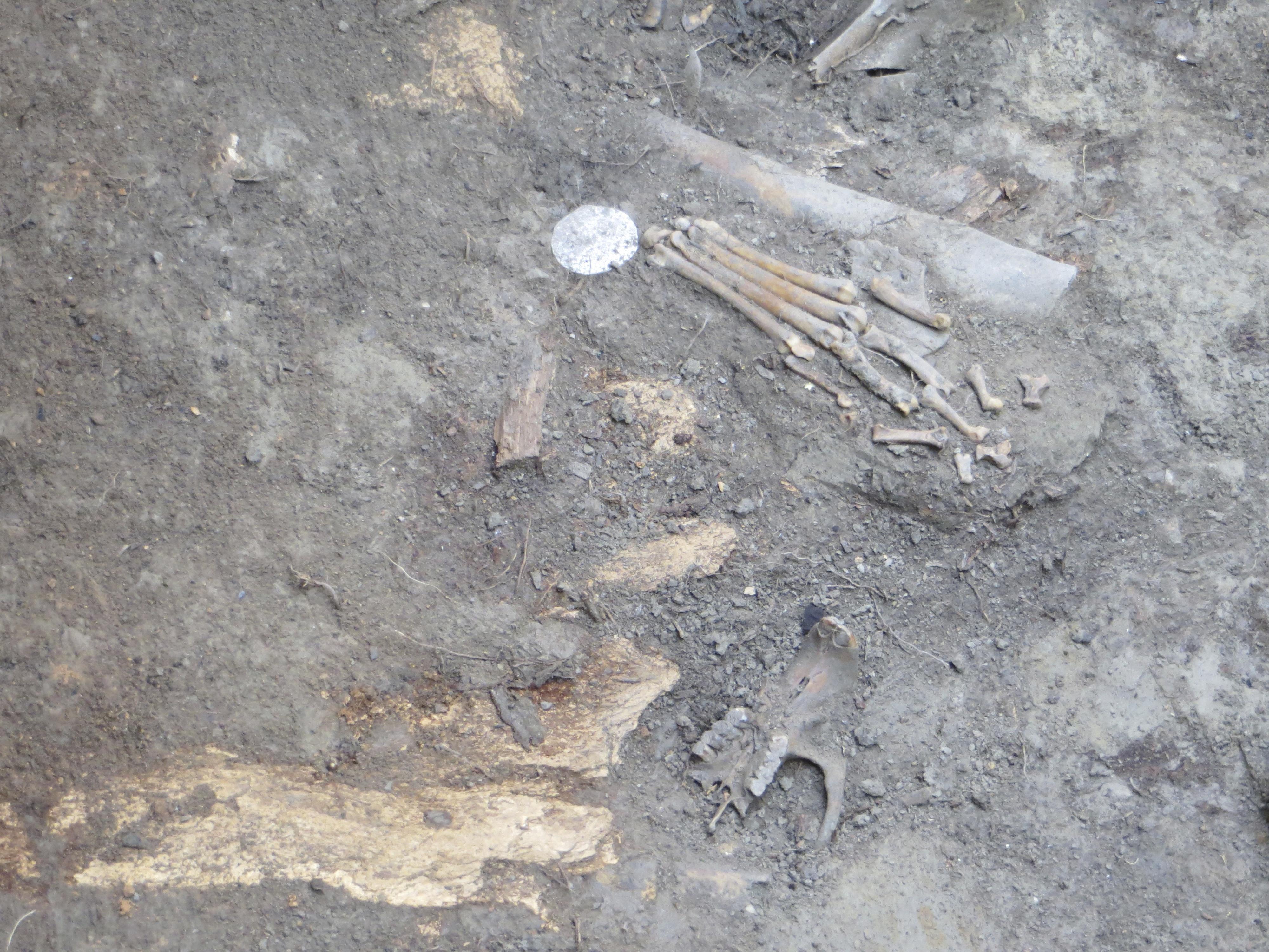 Archeological findings at La Fleur's Post 2013.  Photo Credit: Annamie Le Roux